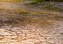 Le plan de lutte contre la sécheresse selon Nicolas Hulot