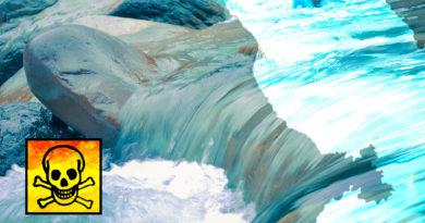 Quand les fosses septiques et microstations polluent les eaux de la Martinique…