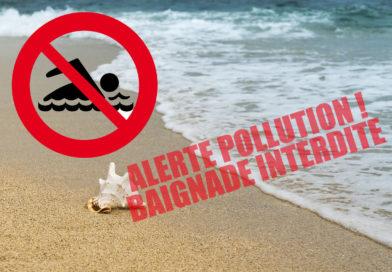 Pollution des eaux de baignade à Sainte-Anne Martinique (Août 2019)